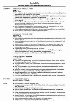 it internal audit resume sles velvet