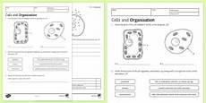ks3 science space worksheets 13405 beyond secondary ks3 science resources