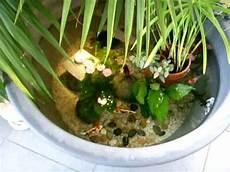bassin koi interieur bassin d int 233 rieur