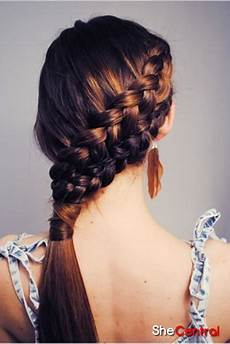 Braids Hairstyles 2013