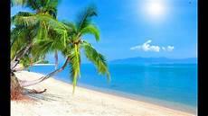 tropical island music caribbean dream youtube