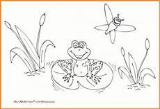 Ausmalbild Frosch Am Teich Frosch Im Teich Ausmalbild Rooms Project