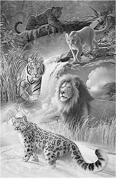 draw so animals coloring pages 17359 pin by cornelia bezuidenhout on animals pencil drawings of animals animal drawings