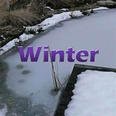 teich winterfest machen teich im winter winterfest machen teichfilter