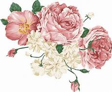 peony clipart peony free vector 75 free vector for commercial