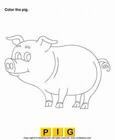 free worksheets for kindergarten 15533 what color are pigs worksheet turtle diary