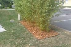 Barri 232 Re Anti Rhizome Pour Bambou Offemont Romary Paysage