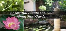 9 Essential Plants For Your Feng Shui Garden Diet Of