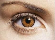 yeux marron vert guide maquillage quelles couleurs pour les yeux marron