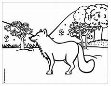 woodland animals coloring pages free 17189 forest coloring page animal planet fox coloring page animal coloring pages coloring
