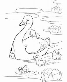 free coloring pages pond animals 17411 farm animal coloring page ducks in the pond farm animal coloring pages animal coloring pages