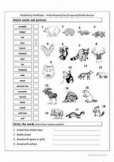 animals abilities worksheets 13782 vocabulary matching worksheet animals from europe america worksheet free esl