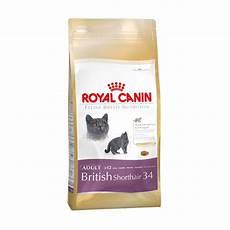 buy royal canin shorthair 34 cat food 4kg