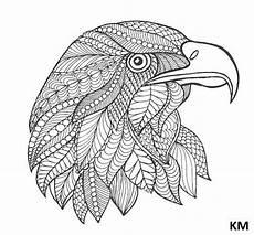 ausmalbilder falke ausmalbildertv vogel doodle