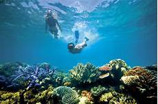 diving and snorkelling in far queensland