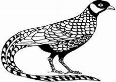 Ausmalbilder Gemusterte Tiere Vogel Bild Zum Ausmalen Test 4