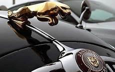 jaguar car logo jaguars at the mille miglia telegraph
