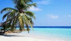 the top 20 best tropical islands in the world