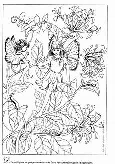 ausmalbilder elfen f erwachsene tiffanylovesbooks
