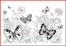 Ausmalbild Schmetterling Blume Ausmalbild Schmetterling Auf Blume Rooms Project