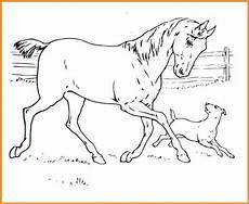 Ausmalbilder Pferde Und Hunde Ausmalbilder Pferde Und Hunde Rooms Project