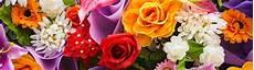 tutti i fiori tutti i nostri fiori floraqueen consegna di fiori in