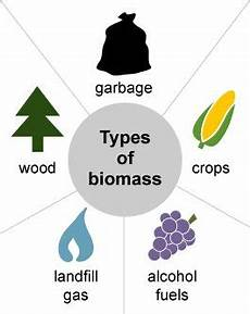 biomass boilers biomass fuel types heating gasification benefits