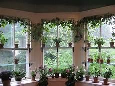 Kitchen Bay Window Plants by Bringing Houseplants Indoors Window Garden Ideas