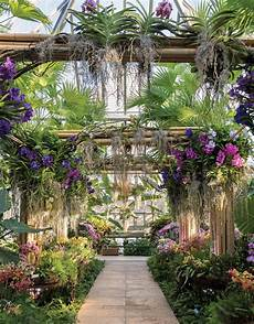 Garden Chicago by Escape To The Tropics At The Chicago Botanic Garden Orchid