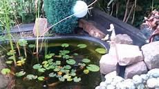 Mein Teich Klares Wasser Mit Altem Filter Ohne Uv Le