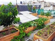 jardin potager sur terrasse pas besoin de jardin des potagers sur les toits de nos