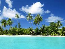 world visits tropical island wallpaper free review