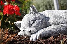 Deko Katze Garten - steinfigur katze schlafend gross frostfest gartenfigur