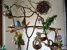Wellensittich Spielzeug Selber Bauen - vogelbaum f 252 r wellensittiche basteln wellensittich