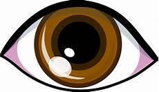 Brown Eye Clipart brown cliparts co