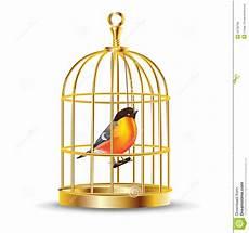 gabbia uccello gabbia di uccello illustrazioni vettoriali e clipart