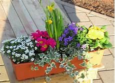 Bepflanzter Fr 252 Hlings Balkonkasten Bunt In 3 Gr 246 223 En