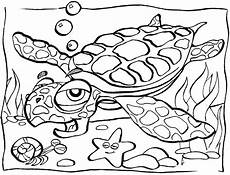 sea animals coloring pages 17500 free printable coloring pages for turtle coloring pages animal coloring pages