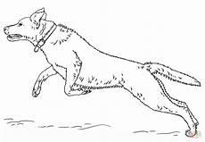 Ausmalbilder Hunde Labrador Ausmalbild Springender Labrador Retriver Ausmalbilder