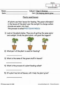 science worksheets on plants for grade 4 13724 primaryleap co uk plants need leaves worksheet plants worksheets science worksheets