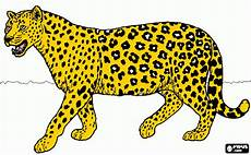 ausmalbilder jaguar jaguar zum ausdrucken