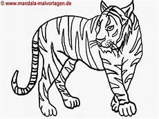 frisch ausmalbilder tiere gro 223 animal