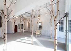 arbre d interieur design 20 inspirations pour mettre un arbre dans la maison joli