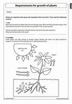 science worksheets on plants for grade 4 13724 requirements for growth of plants science worksheet grade 4 science worksheets