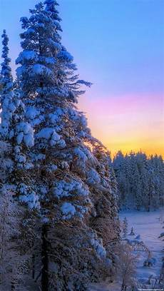 winter sunset iphone wallpaper hd winter sunset hd wallpaper 50 images