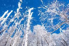 2020 mini buzul cagi nasa nın yeni iklim raporu ndan gezegenimiz mini buzul