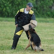 comment trouver un bon dresseur de chien animaland fr