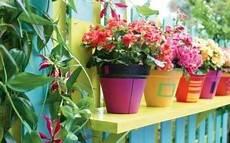 vasi colorati per piante come scegliere i migliori vasi per piante e fiori o per l