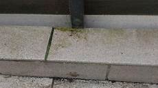 grünspan entfernen balkon balkonfliesen reinigen frag mutti