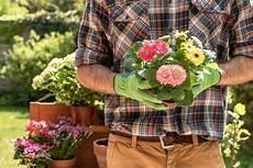 Devenir Auto Entrepreneur Et Jardinier Comment